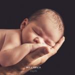 presupuesto fotografia newborn