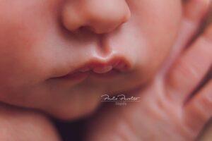 fotografo newborn buenos aires