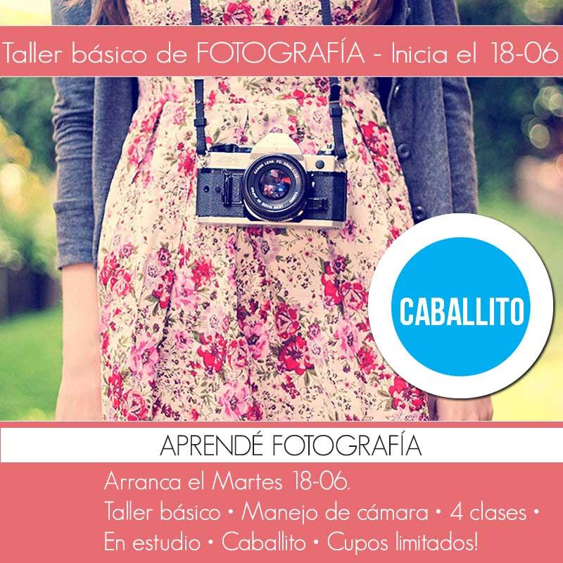 taller foto caballito